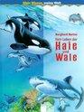 Mein Wissen meine Welt Haie und Wale