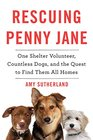 Rescuing Penny Jane One Shelter Volunteer Countless Dogs and the Quest to Find Them All Homes