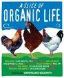 A Slice of Organic Life