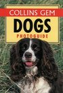Dogs Photo Guide