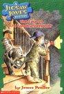 The Case Of The Spooky Sleepover (Jigsaw Jones Mysteries , Bk 4) (Large Print)