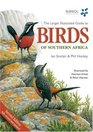 Larger Illustrated Guide to Birds of Southern Africa