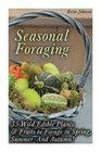 Seasonal Foraging 35 Wild Edible Plants  Fruits to Forage in Spring  Summer  Autumn