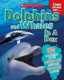 Dolphins  Whales in a Box