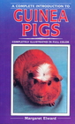 Guinea Pigs: A Complete Introduction