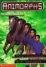 The Unknown (Animorphs, Bk 14)