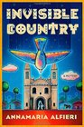 Invisible Country A Mystery