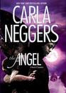 The Angel (BPD-FBI, Bk 2)