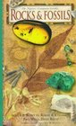 Rocks and Fossils (Nature Company Guides)