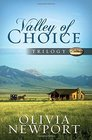 Valley of Choice Trilogy Accidentally Amish / In Plain View / Taken for English