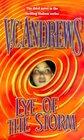 Eye of the Storm (Hudson Family, Bk 3)