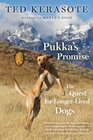 Pukka's Promise The Quest for Longer-Lived Dogs