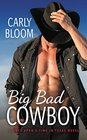Big Bad Cowboy (Once Upon a Time in Texas, Bk 1)
