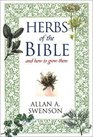 Herbs of the Bible and How to Grow Them