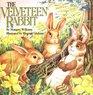 The Velveteen Rabbit (All Aboard)