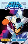 Mega Man 10 Legends of the Blue Bomber