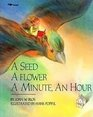 A Seed a Flower a Minute an Hour