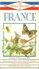The Holiday Naturalist In France