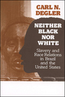 Neither Black Nor White Slavery and Race Relations in Brazil and the United States