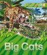 Explorers Big Cats