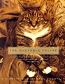 The Quotable Feline