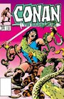 Chronicles of Conan Volume 21 Blood of the Titan and Other Stories