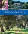 The Illustrated Olive Farm : A Newly Written, Illustrated Companion to Her Bestselling Trilogy