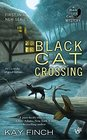 Black Cat Crossing (Bad Luck Cat, Bk 1)