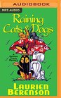Raining Cats  Dogs