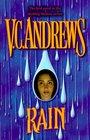 Rain (Hudson Family, Bk 1)