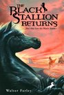 The Black Stallion Returns (Black Stallion, Bk 2)