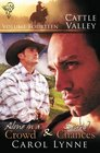 Cattle Valley Vol 14 Alone in a Crowd / Second Chances