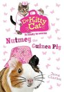 Dr Kittycat is Ready to Rescue Nutmeg the Guinea Pig