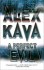 A Perfect Evil (Maggie O'Dell, Bk 1)