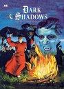 Dark Shadows The Complete Series Volume 5