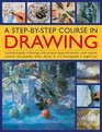 A Step-By-Step Course In Drawing A Practical Guide To Drawing With Projects Using Soft Pencils Cont Crayons Charcoal And Graphite Sticks Shown In 175 Photographs
