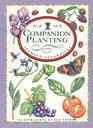 AZ of Companion Planting