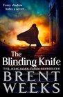 The Blinding Knife (Lightbringer, Bk 2)