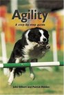 Agility A StepByStep Guide