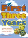 The First 3 Years: A Guide for Ministry With Infants, Toddlers, and Two-Year-Olds