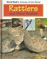 Rattlers and Other Snakes Book Author Cecilia Venn