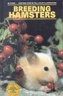 Breeding Hamsters