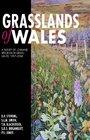 Grasslands of Wales A Survey of Lowland Speciesrich Grasslands 19872004