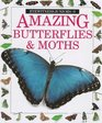 Amazing Butterflies and Moths