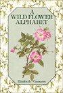 Wild Flower Alphabet