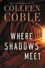 Where Shadows Meet A Romantic Suspense Novel