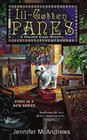 Ill-Gotten Panes (Stained Glass, Bk 1)