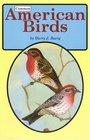 Common American Birds
