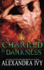 Charred by Darkness (Dragons of Eternity) (Volume 3)