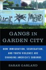Gangs in Garden City How Immigration Segregation and Youth Violence are Changing America's Suburbs